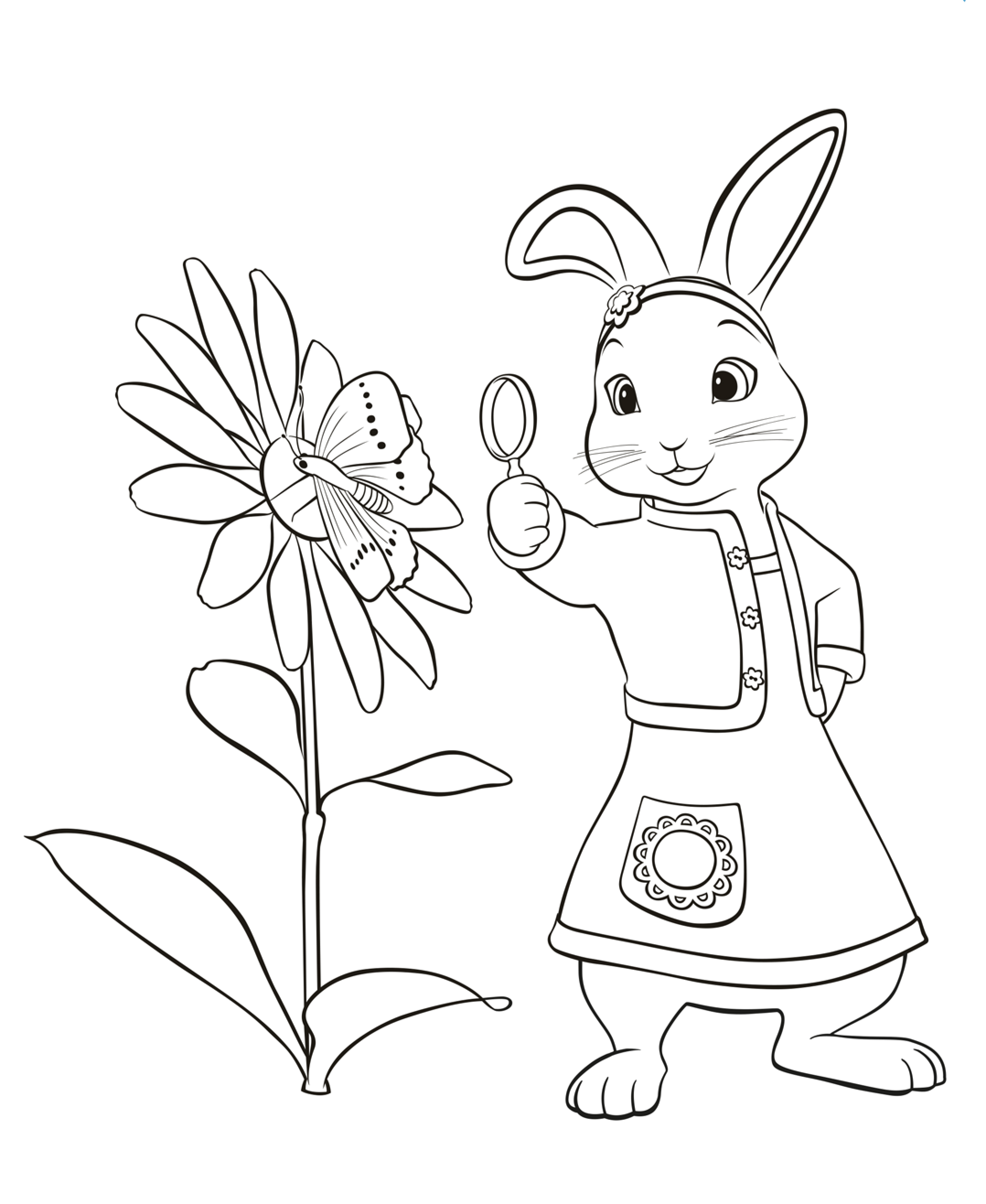 Bunny Rabbit Coloring Pages | Ak74